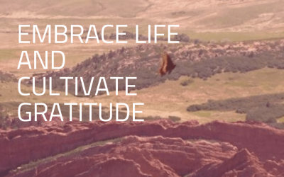 Embrace Life And Cultivate Gratitude